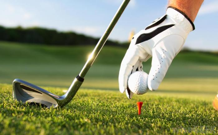 Golf in terms and figures